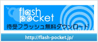 flash pocket